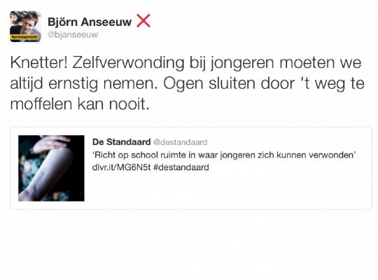 zelfverwonding jongeren - Björn Anseeuw